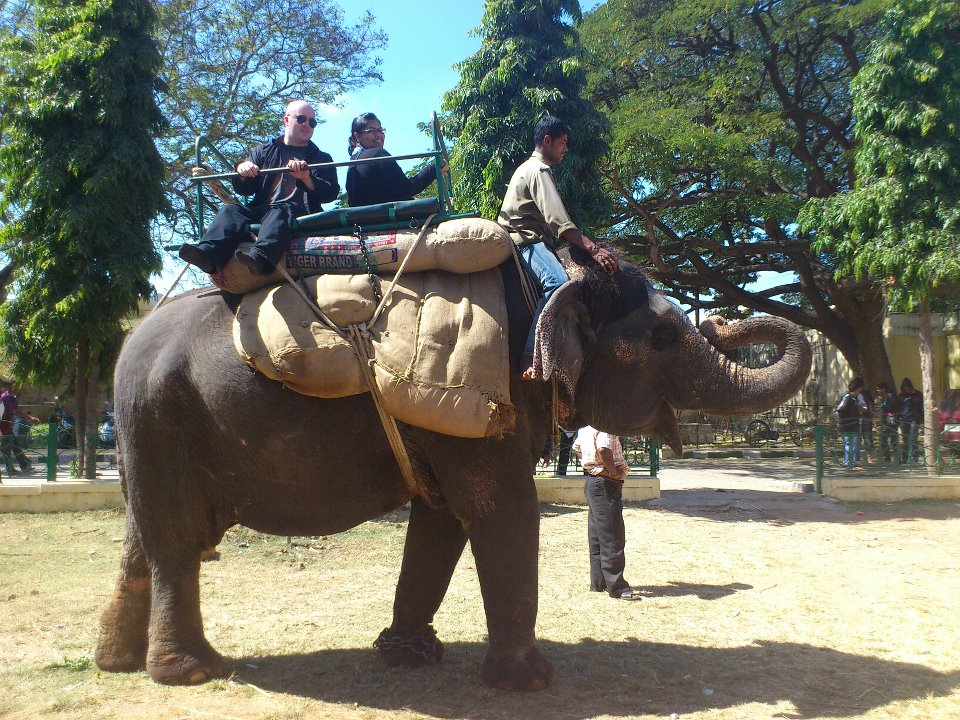 This is me. On an elephant.