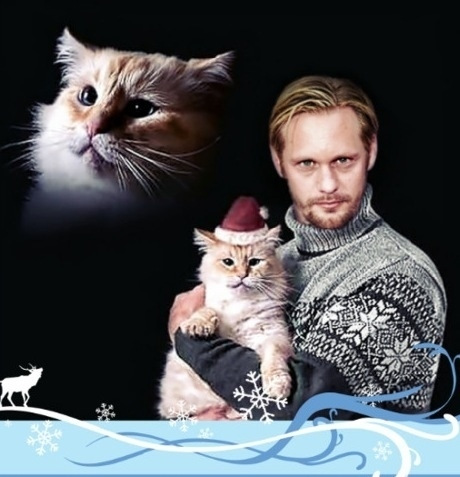 Cat & Owner Christmas Card