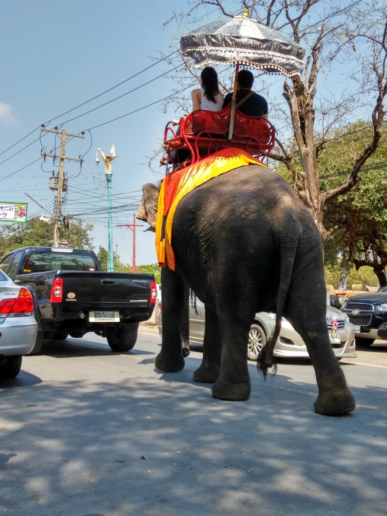 Ayutthaya Traffic Jam